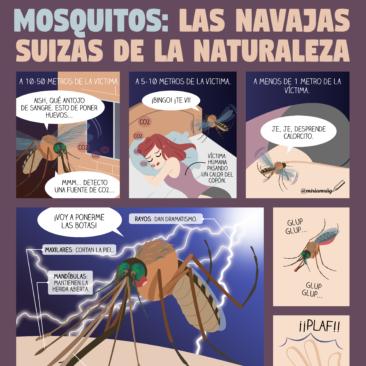 Mosquitos: las navajas suizas de la naturaleza